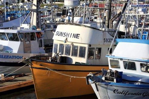 Boats Of Half Moon Bay 1