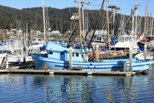 Boats Of Half Moon Bay 2