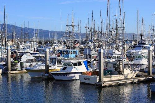 Boats Of Half Moon Bay 6