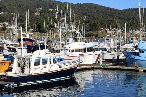 Boats Of Half Moon Bay 8