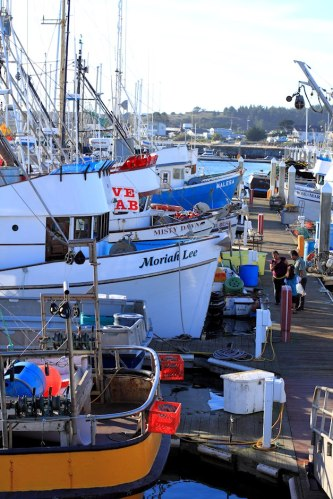 Crab Fishing Boats In Half Moon Bay 4
