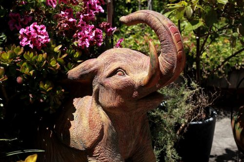 Pink Elephant In The Garden