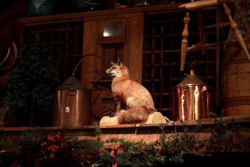 Moonshine Fox