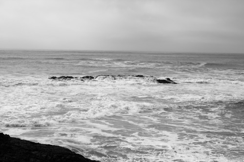 Foggy Pescadero Coast
