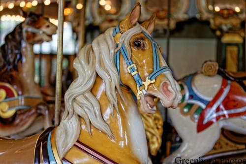 Frightened Carousel Horse