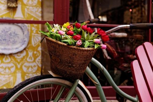 Bike with Tulips