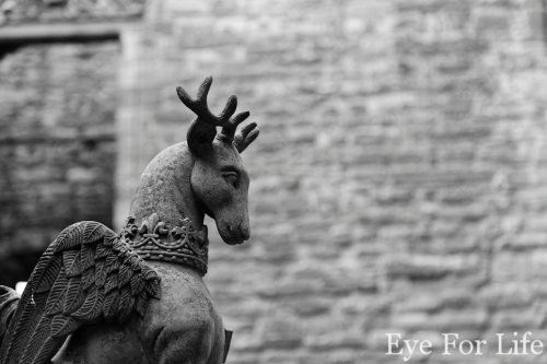 Linlithgow Winged Stag